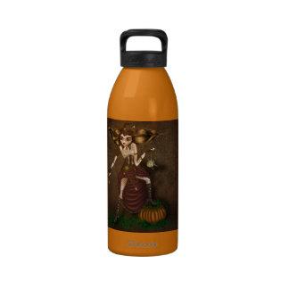 steampunk cinderella water bottle