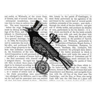Steampunk Crow 2 Postcard