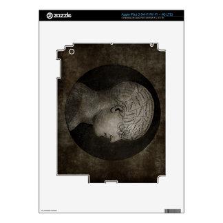 Steampunk Distressed Phrenology Skin For iPad 3