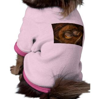 Steampunk - ey Mosca-Muchacho Camisa De Mascota