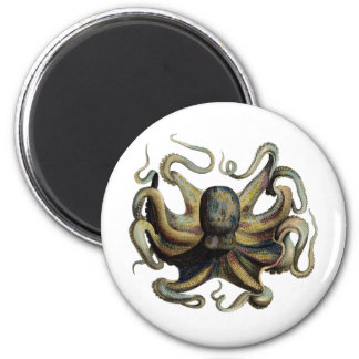 Steampunk inspiró el pulpo imán redondo 5 cm