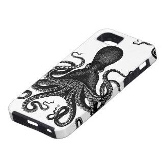 Steampunk Kraken duro - pulpo del Victorian iPhone 5 Cárcasas
