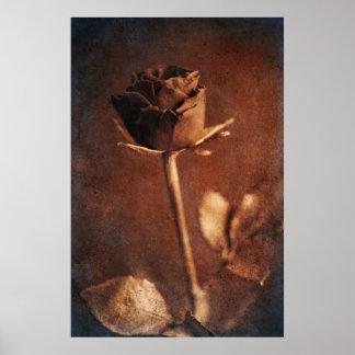 Steampunk Rose Poster