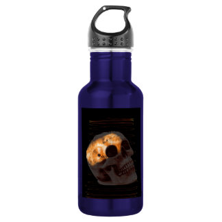 Steampunk skeleton skull machinery cogs rust water bottle