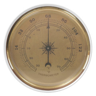 Steampunk Thermometer Melamine Plate