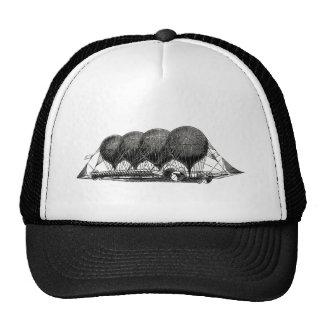 Steampunk Victorian Airship Trucker Hat
