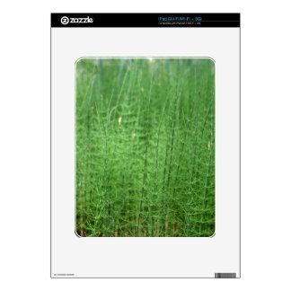 Steams of water horsetail iPad decals