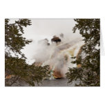 Steamy Bison in Yellowstone National Park Greeting Card