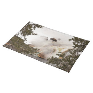 Steamy Bison - Yellowstone National Park - Buffalo Cloth Placemat