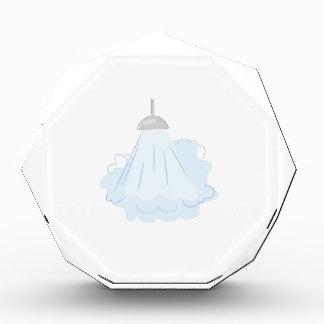Steamy Shower Acrylic Award