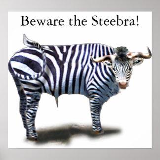 Steebra Posters