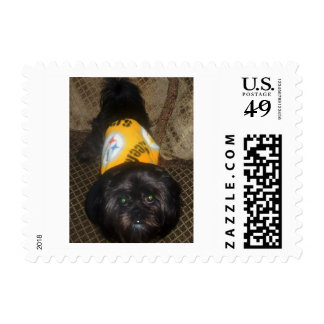 Steelers Stamps, Black and Gold, Cute, black dogs