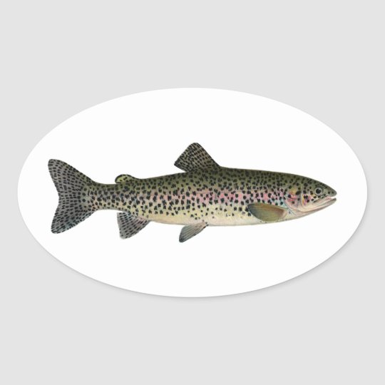 Steelhead (Great Lakes) Oval Sticker