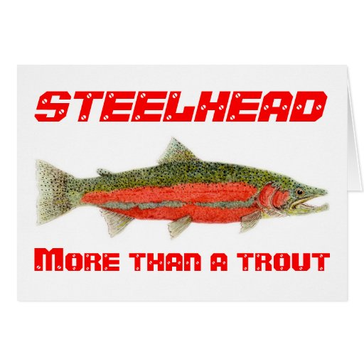 Steelhead- More than a trout Card
