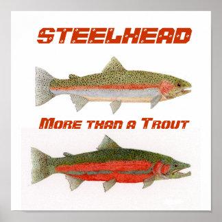 Steelhead Poster