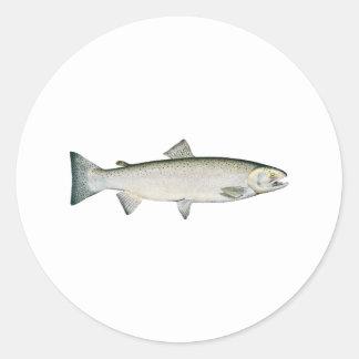 Steelhead Rainbow Trout Classic Round Sticker