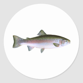 Steelhead Rainbow Trout Fishing  Logo Classic Round Sticker