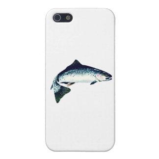 Steelhead Swimming iPhone SE/5/5s Cover