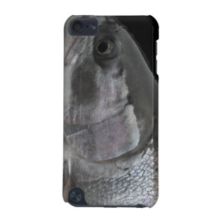 Steelhead Trout Skin iPod Touch iPod Touch 5G Cover