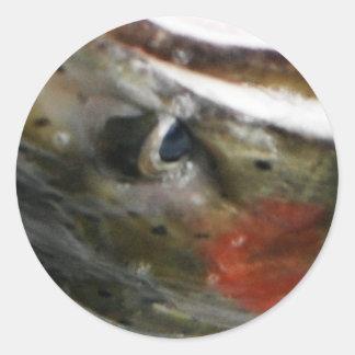 Steelie Gaze Classic Round Sticker