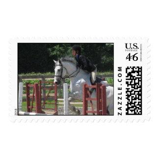 Steely Grey Pony Postage Stamp
