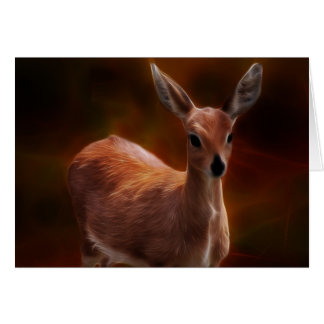 Steenbok deer are so tiny card
