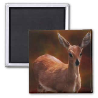 Steenbok deer are so tiny 2 inch square magnet