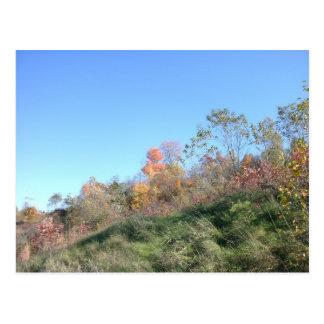 Steep Hill Postcard