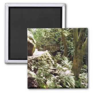 Steep Ravine trail 2 Inch Square Magnet
