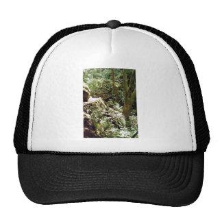 Steep Ravine trail Trucker Hats