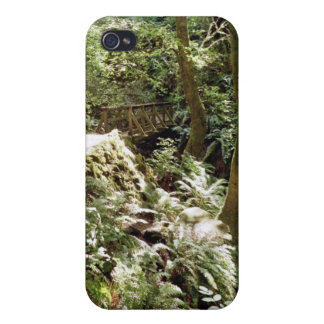 Steep Ravine trail iPhone 4 Cover