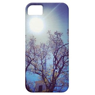 steeple sunset iPhone SE/5/5s case
