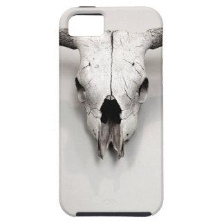 Steer Head Southwest Vintage Decor iPhone SE/5/5s Case