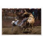 Steer rider takes a fall poster
