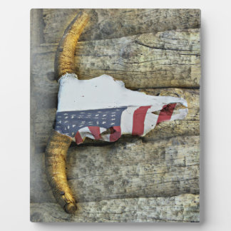 Steer Skull with the American Flag Plaque