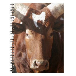 Steer With Long Horns Notebook