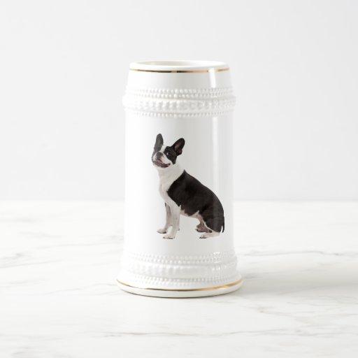 Stein hermoso de la foto del perro de Boston Terri Taza