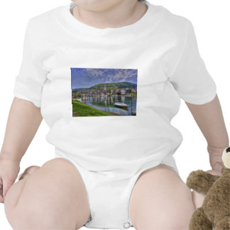 Stein on the River Rhine Tshirts