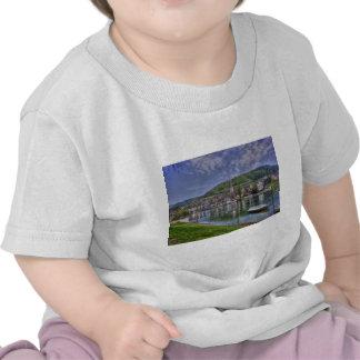 Stein on the River Rhine T Shirt