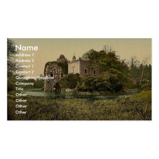 Stein, park of Worlitz, Anhalt, Germany classic Ph Double-Sided Standard Business Cards (Pack Of 100)
