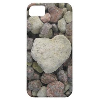 Steinberg iPhone SE/5/5s Case