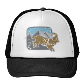 steinbock_dd_used.png trucker hat
