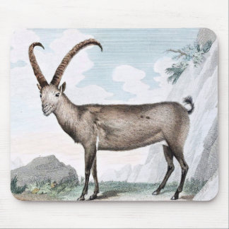 Steinbock (Ibex) Illustration Mouse Pad