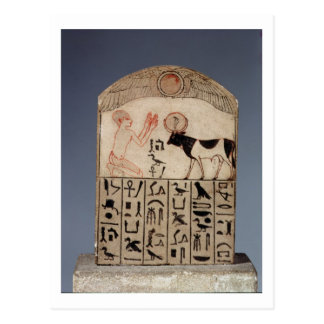 Stela to the Apis bull (painted limestone) Postcard