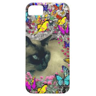 Stella en gato siamés del punto del chocolate de l iPhone 5 Case-Mate protectores