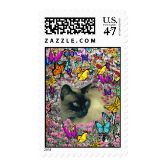 Stella in Butterflies Chocolate Point Siamese Cat Postage