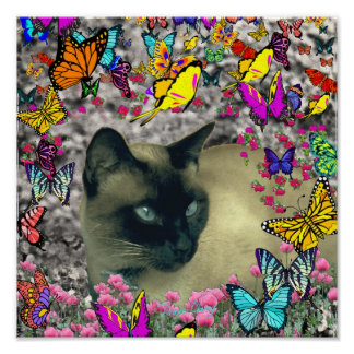 Stella in Butterflies Chocolate Point Siamese Cat Poster