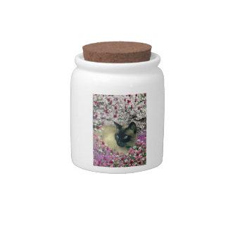 Stella in Flowers I – Chocolate Cream Siamese Cat Candy Jars