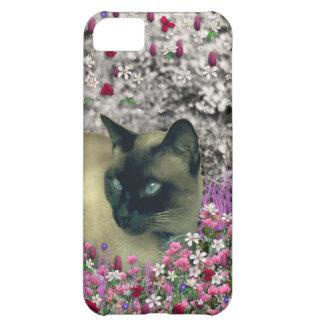 Stella in Flowers I – Chocolate Cream Siamese Cat iPhone 5C Cover
