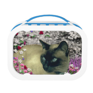 Stella in Flowers I, Chocolate & Cream Siamese Cat Yubo Lunchbox